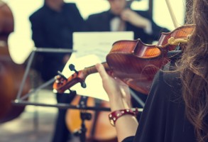 Violin-072514